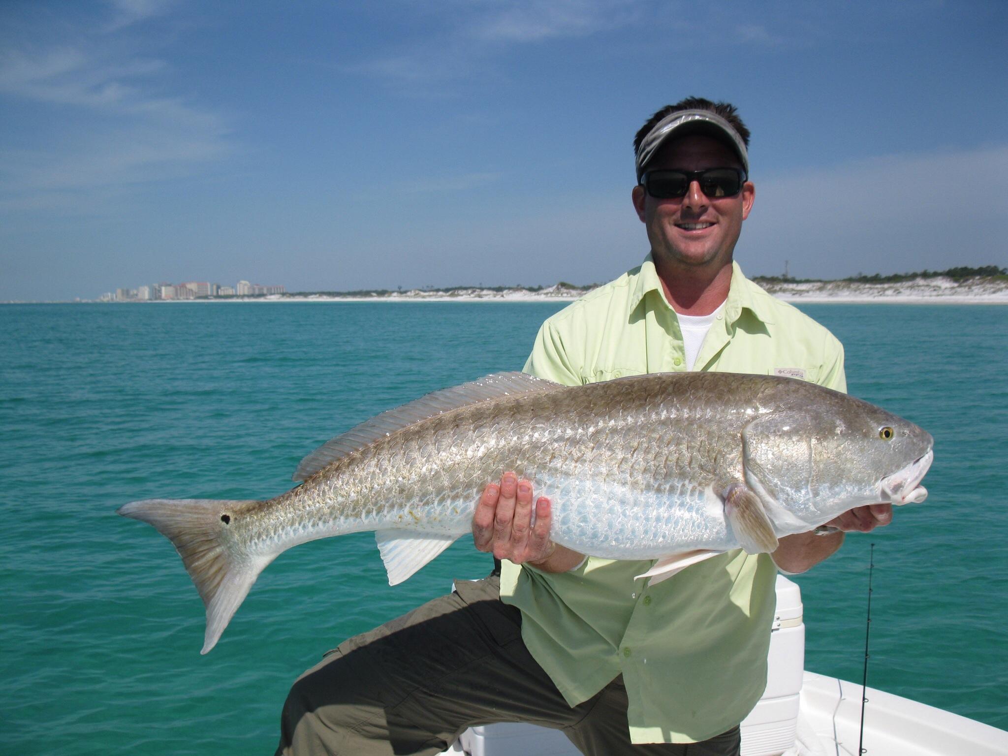 Ny nc april 2016 for Fishing charters pensacola