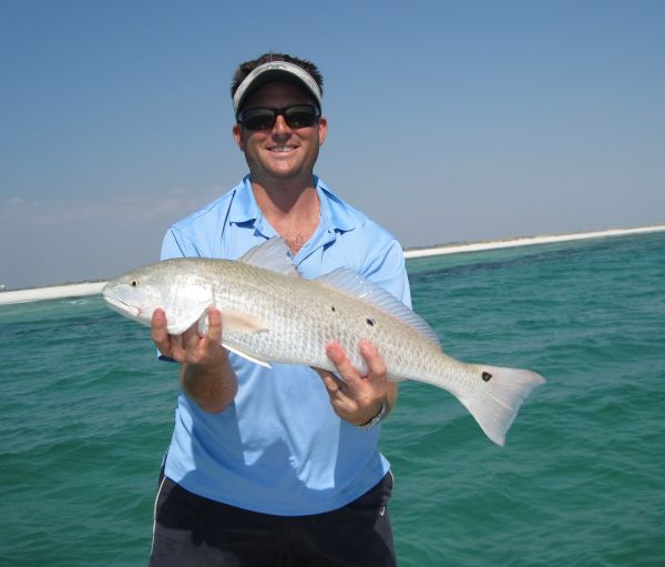 Emerald ghost fishing charters photo gallery for Destin fl fishing report
